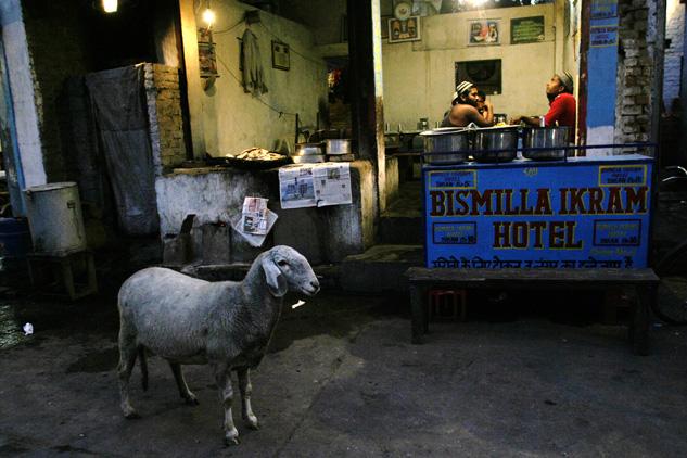 http://danicardona.com/files/gimgs/5_touristdcardona03.jpg